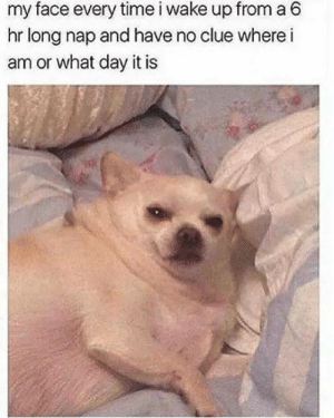 anxietyproblem:Follow us @anxietyproblem: my face every time i wake up from a 6  hr long nap and have no clue where i  am or what day it is anxietyproblem:Follow us @anxietyproblem