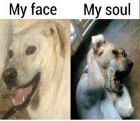 My Face When: My face  My soul  My