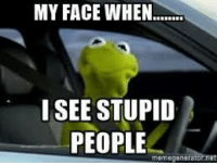 Kermit the Frog, My Face When, and Stupidity: MY FACE WHEN  I SEE STUPID  PEOPLE  meme genera