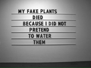 Fake, Water, and Did: MY FAKE PLANTS  DIED  BECAUSE I DID NOT  PRETEND  TO WATER  THEM