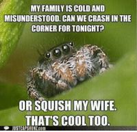 I live in the basement so I have to deal with spiders and other crap all the time, it gets annoying really fast.: MY FAMILY IS COLDAND  MISUNDERSTOOD CAN WE CRASHIN THE  CORNER FOR TONIGHT  OR SQUISH MY WIFE  THAT'S COOL TOO  JUSTCAPSHUNZ.com I live in the basement so I have to deal with spiders and other crap all the time, it gets annoying really fast.