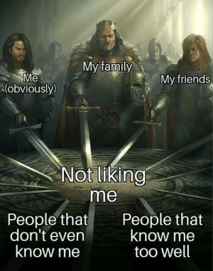 Family, Friends, and Irl: My family  Me  (obviously)  My friends  Not liking  me  People that  don't even  know me  People that  know me  too well Me irl