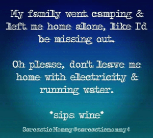 Dank, Family, and Wine: My family went. camping &  left. me home allone, like Id  be missing out.  Oh please, dont. leawe me  home with electricity &  running warter.  sips wine  Sarcastic Mommy@sarcasticmommy 4 Whatever will I do while you're gone? 😏  (via Sarcastic Mommy)