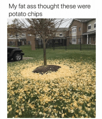 Ass, Fat Ass, and Funny: My fat ass thought these were  potato chips They are if ur Vegan 🤢