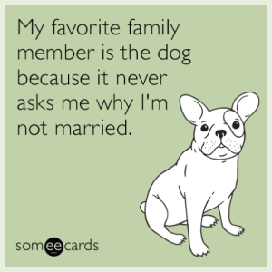 Family, Someecards, and Never: My favorite family  member is the dog  because it never  asks me why I'm  not married.  someecards  ее