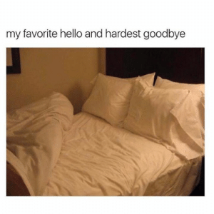 Dank, Hello, and 🤖: my favorite hello and hardest goodbye So soft, so comfy.