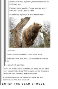 """Wow, Bear, and Bears: my favourite thing is probably the scientific name of  the Grizzly bear.  It's Ursus arctos horribilis. """"ursus"""" meaning bear in  Latin and """"arctos"""", bear in Greek  so essentially a grizzly is a """"horrible bear bear.  shaymew  The Eurasian Brown Bear is Ursus arctos arctos  So literally """"Bear Bear Bear. The most bear a bear can  be.  So bear. Much roar. Wow.  Also! The Arctic Circle is named for the bears, not the other  way round. It's the Circle With Bears In, and the Antarctic is  the Circle (and continent) Away From Bears.  Are you telling us that the poles of our world are Bear  Continent and Anti-Bear Continent  ENTER THE BEAR CIRCLE"""