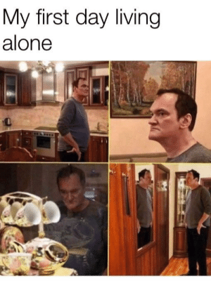 Being Alone, Living, and Yes: My first day living  alone Yes please