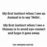 My First Instinct When I See An Animal Is To Say Hello My First Instinct When I See A Human Is to Avoid Eye Contact And Hope They Go Away
