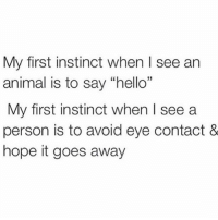 "Hello, Memes, and Animal: My first instinct when I see an  animal is to say ""hello  My first instinct when I see a  person is to avoid eye contact &  hope it goes away  15 Same."