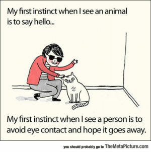 Hello, Tumblr, and Animal: My first instinct when I see an animal  is to say hello...  My first instinct when l see a person is to  avoid eye contact and hope it goes away.  you should probably go to TheMetaPicture.com srsfunny:It's My First Instinct