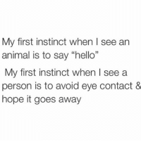 "Hello, Animal, and Girl Memes: My first instinct when l see ar  animal is to say ""hello""  My first instinct when I see a  person is to avoid eye contact &  hope it goes away I'm smiling at your dog not you"