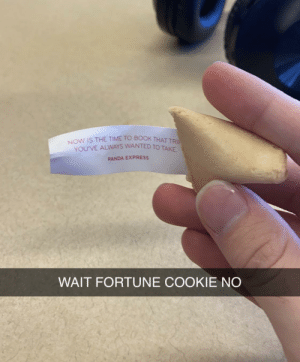 My fortune cookie is up to something…: My fortune cookie is up to something…