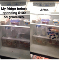 Anaconda, Food, and Funny: My fridge before  spending $100  on groceries.  Celeb  After.  Celeb Life as a single adult. relatable food memes instagood lol funny haha lmao textpost textgram life instalife meme