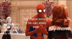 Tumblr, Blog, and Sleep: My friend asking  if he can sleep  Mafter saying  he has to ask  because shell  say no to me  over  My mom srsfunny:  We've all been there before