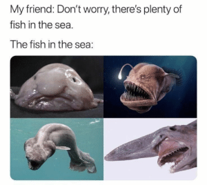 Fish, Plenty of Fish, and MeIRL: My friend: Don't worry, there's plenty of  fish in the sea.  The fish in the sea: Meirl