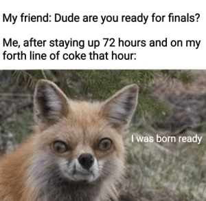 Dude, Finals, and Coke: My friend: Dude are you ready for finals?  Me, after staying up 72 hours and on my  forth line of coke that hour:  le  I was born ready I was born ready