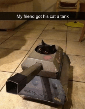 laughoutloud-club:  German Tank Forces Preparing for the Battle of the Bulge. (1944): My friend got his cat a tank  HOWS M NN  CATION laughoutloud-club:  German Tank Forces Preparing for the Battle of the Bulge. (1944)