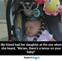 """Friends, Memes, and Baby: My friend had her daughter at the zoo when  she heard, """"Ma'am, there's a lemur on your  baby!""""  TalentA  Explore Well, this is awkward..."""