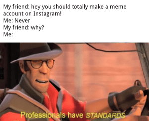 Instagram, Meme, and Reddit: My friend: hey you should totally make a meme  account on Instagram!  Me: Never  My friend: why?  Ме:  Professionals have STANDARDS Normies