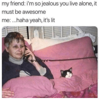 Being Alone, It's Lit, and Jealous: my friend: i'm so jealous you live alone, it  must be awesome  me: ...haha yeah, it's lit Lmaoo 🐱🐱😂😂😂 🔥 Follow Us 👉 @latinoswithattitude 🔥 latinosbelike latinasbelike latinoproblems mexicansbelike mexican mexicanproblems hispanicsbelike hispanic hispanicproblems latina latinas latino latinos hispanicsbelike