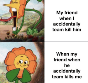 Been, Him, and Friend: My friend  when I  accidentally  team kill him  When my  friend when  he  accidentally  team kills me We've all been there before