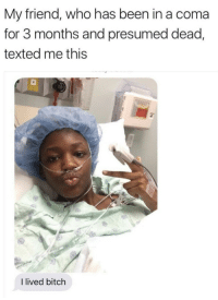 "Bitch, Memes, and Tumblr: My friend, who has been in a coma  for 3 months and presumed dead,  texted me this  I lived bitch <p><a href=""https://positive-memes.tumblr.com/post/166395954630/best-text-ever"" class=""tumblr_blog"">positive-memes</a>:</p>  <blockquote><p>Best text ever</p></blockquote>"
