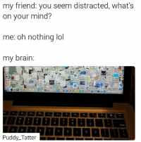 😂😂😂😂: my friend: you seem distracted, what's  on your mind?  me: oh nothing lol  my brain:  Puddy Tatter 😂😂😂😂