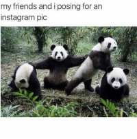 Friends, Instagram, and Memes: my friends and i posing for an  instagram pic Tag the squad