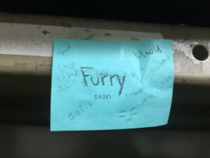 My friends in orchestra changed my name tag to say furry: My friends in orchestra changed my name tag to say furry