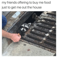 Food, Friends, and House: my friends offering to buy me food  just to get me out the house