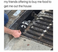 Food, Friends, and House: my friends offering to buy me food to  get me out the house