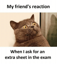 My Friends Reaction When I Ask For An Extra Sheet In The