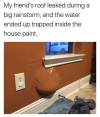 Friends, Memes, and House: My friend's roof leaked during a  big rainstorm, and the water  ended up trapped inside the  house paint. When the water reaches the power outlet, they are in for a show.