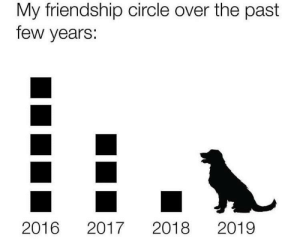 Mans best friend is my only best friend: My friendship circle over the past  few years:  2019  2016  2018  2017 Mans best friend is my only best friend