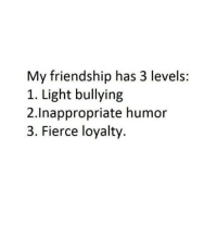 humored: My friendship has 3 levels:  1. Light bullying  2.Inappropriate humor  3. Fierce loyalty