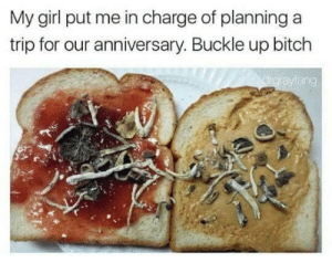 Bitch, Buckle, and Girl: My girl put me in charge of planning a  trip for our anniversary. Buckle up bitch  ang Where were going we dont need roads