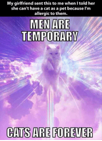 Cant Have A: My girlfriend sent this to me when I told her  she can't have a cat as a pet because l'm  allergic to them.  MEN ARE  CATS ARE FOREVER
