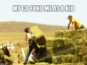 Farming and Fund: MY GO FUND MEASAKID