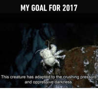 Be strong. Follow @9gag @9gagmobile 9gag deepocean relatable: MY GOAL FOR 2017  atragi  This creature has adapted to the crushing pressure  and oppressive darkness. Be strong. Follow @9gag @9gagmobile 9gag deepocean relatable