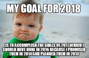 20 Funny New Year Memes | QuotesHumor.com: MY GOALFOR 2018  GOAL FOR 2018  ISTOACCOMPLISH THEGOALSOF2011WHICH  SHOULD HAVE DONE IN 2016 BECAUSEI PROMISED  THEM IN 2014 AND PLANNED THEM IN 2013 20 Funny New Year Memes | QuotesHumor.com