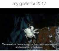 🌙🔑👌🏻🍍: my goals for 2017  Otrag  This creature has adapted to the crushing pressure  and oppressive darkness 🌙🔑👌🏻🍍