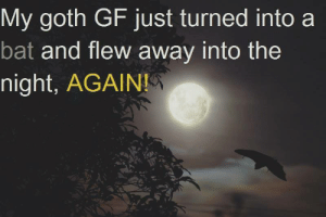 Bat, Goth, and Just: My goth GF just turned into a  bat and flew away into the  night, AGAIN!