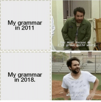 Friends, Memes, and Quite: My grammar  in 2011  You must excuse me.  I've grown quite weary  My grammar  in 2018.  What do no Dm to 5 friends if this is you 😂