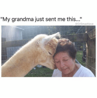 """Grandma, Memes, and Metro Boomin: """"My grandma just sent me this...""""  @DrSmashlove Leg and back day. Out of breath and ain een half done but we don't give up. Soundtrack: Nav and Metro Boomin, """"Perfect Timing"""" all morning - REXDALE STAND TF UP 6️⃣ 🇨🇦 🔥"""