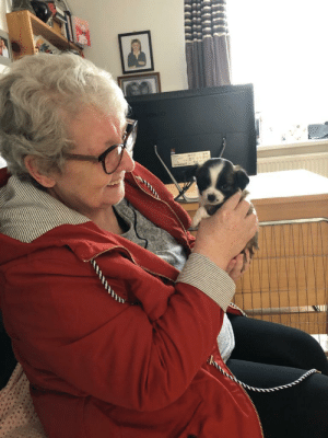 Grandma, Depression, and Happy: My grandma with clinical depression just got a newborn pup and called him gizmo. I have never seen her this happy before. I thought I'd share this moment with the world