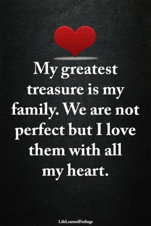 Family, Love, and Memes: My greatest  treasure is my  family. We are not  perfect but I love  them with all  mv heart.  LifeLearnedFeelings <3 #LifeLearnedFeelings