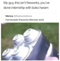 Funny, Fireworks, and Internship: My guy, this isn't fireworks, you've  done internship with boko hararm  Merica @RednecksNews  Homemade fireworks Merican style These niggas blowing IED's not fireworks