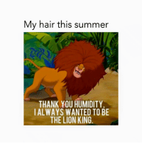 Lion King: My hair this summer  THANK YOU HUMIDITY  IALWAYS WANTED TO BE  THE LION KING