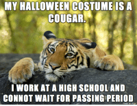 Teach or treat?: MY HALLOWEEN COSTUME ISA  COUGAR.  I WORK AT A HIGH SCHOOLAND  CONNOT WAIT FOR PASSING PERIOD  made on imgur Teach or treat?